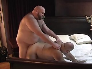 Horny Big Bears