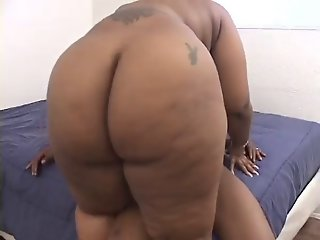 Ebony BBW CC Needs Cock!